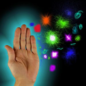 Hand, Imunsystem
