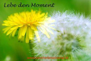 Lebe den Moment (c)Pixabay T_Murakami
